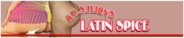 latin-spice-banner-kushions.wordpress