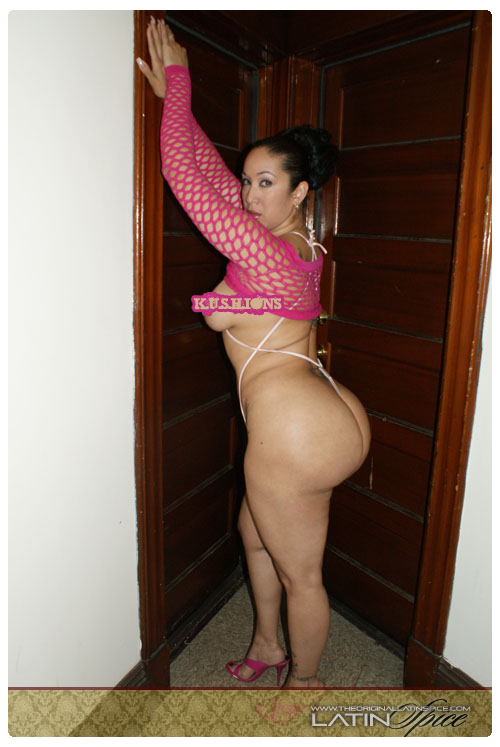 Latin-Spice-Pink-Fishnet-2-kushions.wordpress